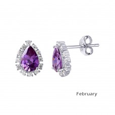 Wholesale Sterling Silver 925 Rhodium Plated Teardrop Halo CZ Birthstone Earrings February - STE01027-FEB