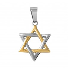 Wholesale Stainless Steel Two Tone Gold Small Star of David - SSP00501GP