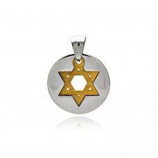 Wholesale Stainless Steel Two Tone Star of David Round Charm Pendant - SSP00460