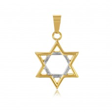 Wholesale Stainless Steel Gold Plated Star Of David Pendant - SSP00506