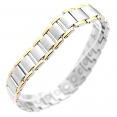 Wholesale Stainless Steel Two Tone Bracelet - SSB00219