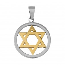 Wholesale Stainless Steel Polished Two Tone Gold Star of David Round Charm Pendant - SSP00504